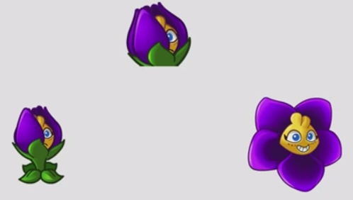 File:Shrinking violet.jpg