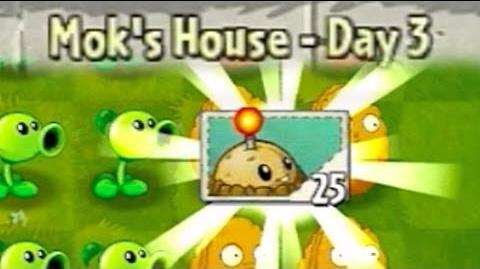 Player's House Day 3 - Walkthrough
