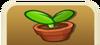 Sprout Shop