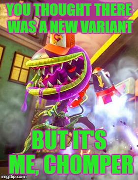 File:Bitey Meme.jpg