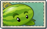 Melon-pult Seed Packet