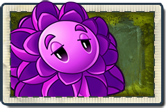File:Stallia Lost City Seed Packet.png