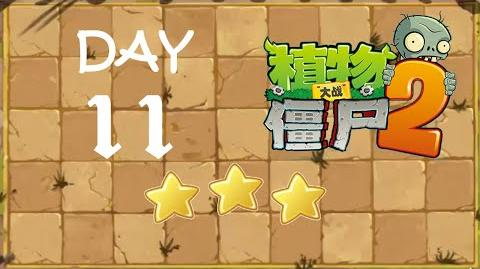 Kung Fu Day 11 TS