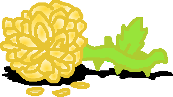 File:Petals of the Golden Rose.png