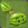 Melon-pultAS