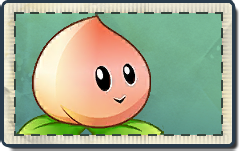 File:Peach Seed Packet.png