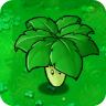File:Umbrella Leaf1.png
