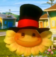 Crooked Top Hat