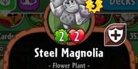 Steel Magnolia/Gallery