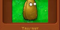 Tall-nut/Gallery