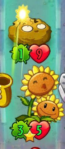 File:Twin Sunflower attacking.jpeg