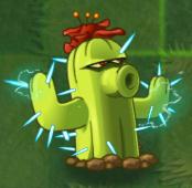 Cactus PF2.png