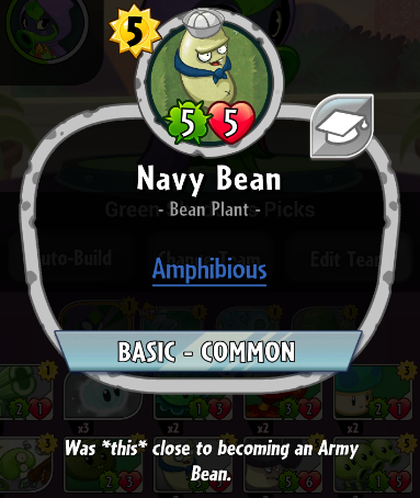 File:Navy Bean description.PNG