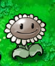 File:ImitaterSunflower.png