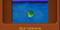 Sea-shroom