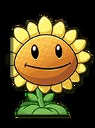 Sunflo