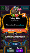 New Turkey Rider