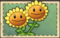 File:Twin Sunflower Seed packet without sun cost..png
