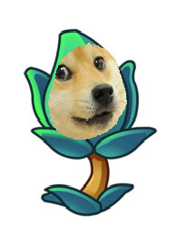 File:Doge Thyme.png