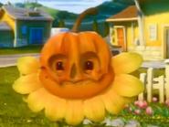 Pumpkin Suprise