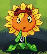 Low Health Solar Flare's Gonna Defeated