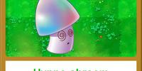 Hypno-shroom/Gallery