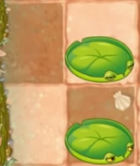 File:Lily Pads on wet sand.png