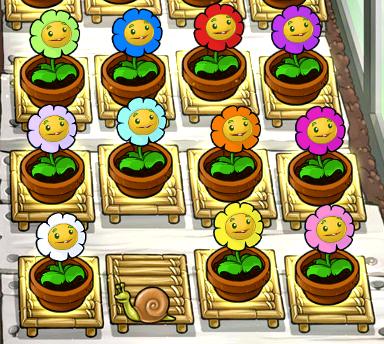 File:Marigolds zen garden.png
