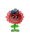 File:Copoppy.png