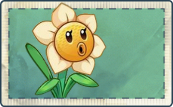 File:Narcissus Seed Packet.png