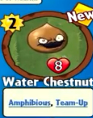 File:Receiving Water Chestnut.jpeg