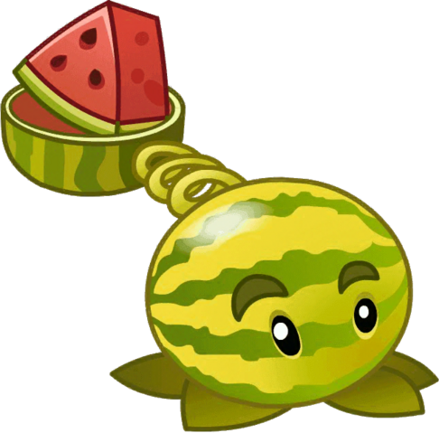 File:Little watermelon close up.png