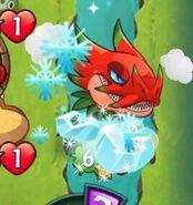Frosty Mustache on My Dark Matter Dragonfruit