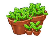 File:25 Sprouts-0.png