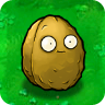 wall bomb nut