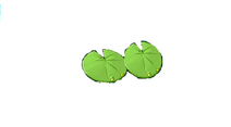 Double Lily Pad