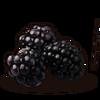 Blackberries icon