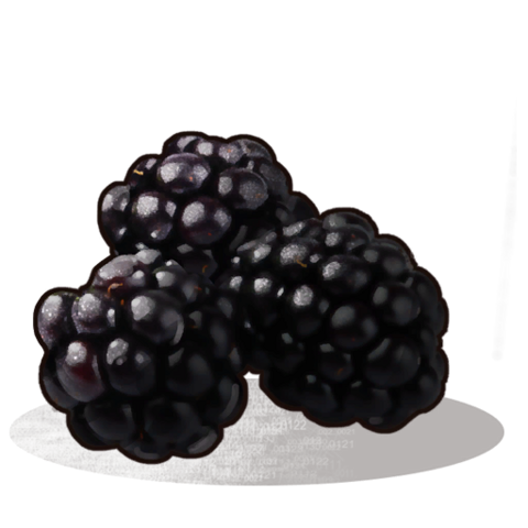 File:Blackberries icon.png