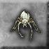Spider husk baby