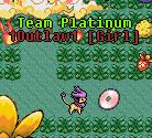 Guild team platinum