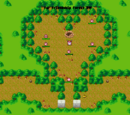 Far Friendship Forest
