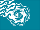 Seattle flag