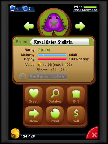 File:Royal Cafea Stellata.png