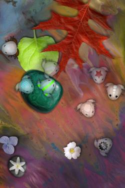 Glassfrogs