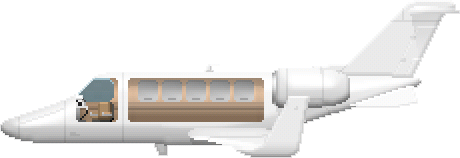 File:PearjetCargo.png