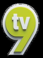 LogoTV9
