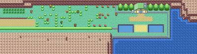 Kanto Route 25 Map