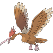 Pokemon Fearow