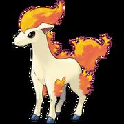 Pokemon Ponyta