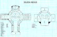 Trainer Nexus